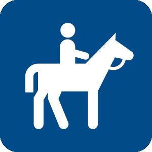 horseback ride icon